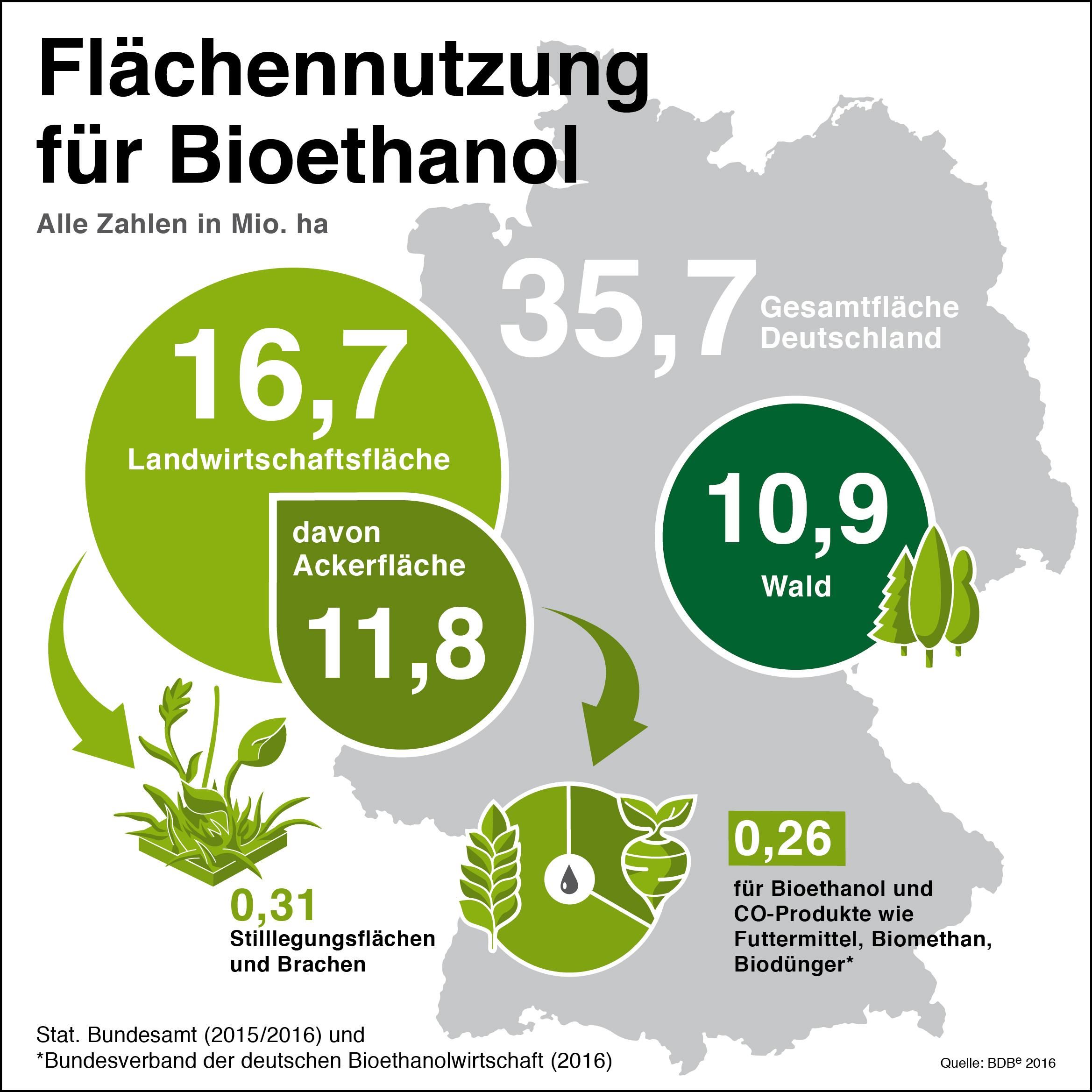 fl chen bioethanol wird in deutschland aus futtergetreide wie zum beispiel triticale. Black Bedroom Furniture Sets. Home Design Ideas