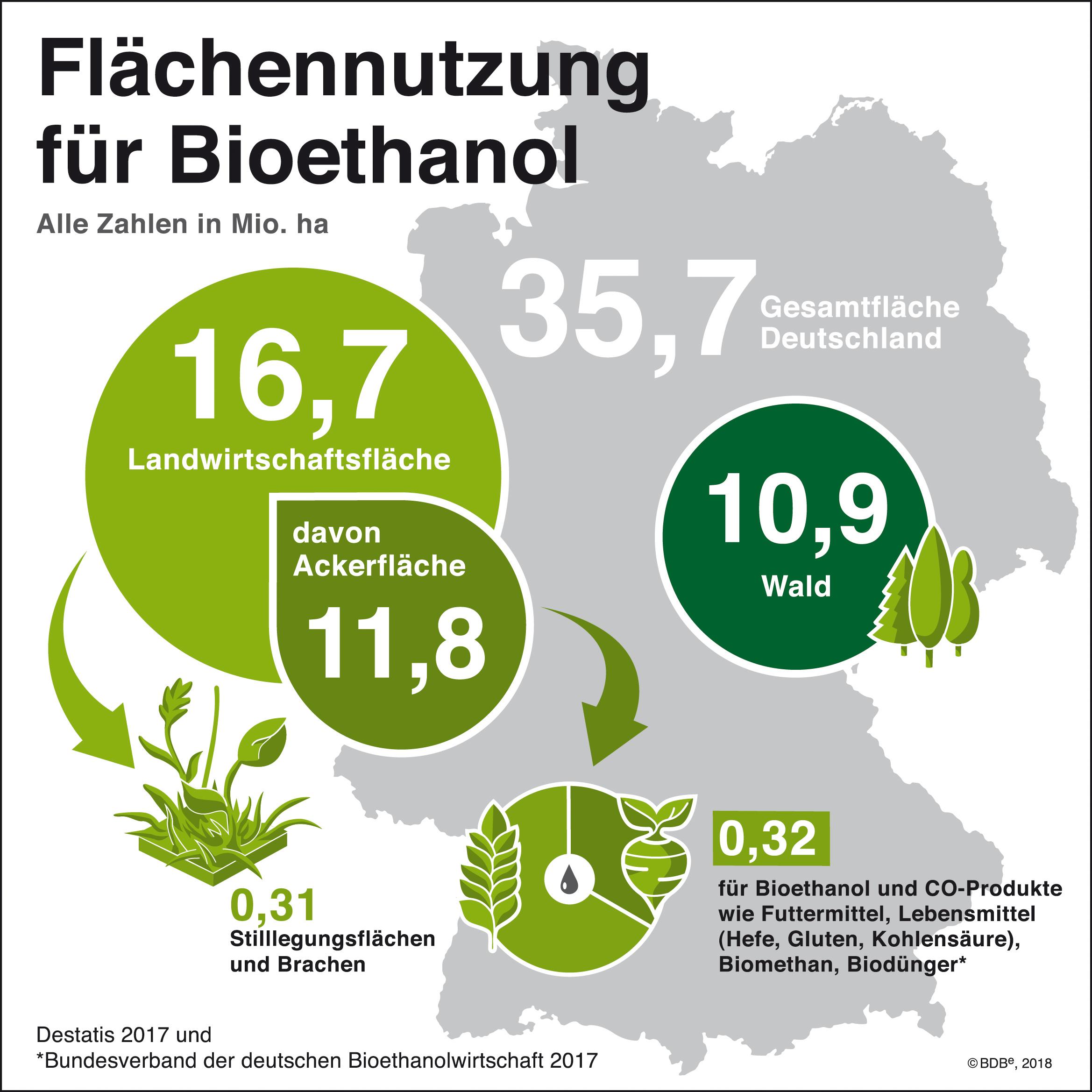 Flaechennutzung Bioethanol JPG